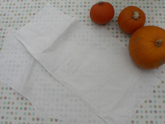 Trouser toile pattern on table with pumpkins